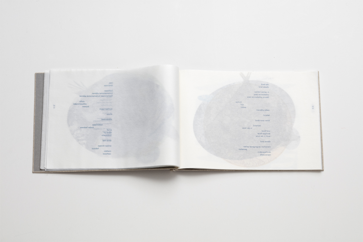 (FOTO: Jussi Tiainen) Künstlerbuch Barfuss im Schnee - Tatjana Bergelt