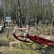 (FOTO: Finntastic) Das Lapplandlager von RENRAJDvualka befindet sich in einem lichten Birkenwäldchen im Tierpark Sababurg.