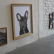 (FOTO: Finntastic) Die FIN-GER Dogumenta stellt Hundeporträts ganz unterschiedlicher Künstler aus.