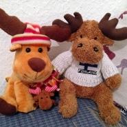 Rudolph das Rentier zu Besuch bei Finntastic