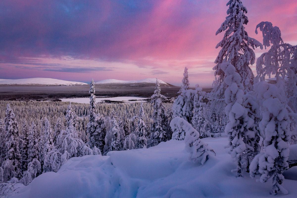 (FOTO: Anja Degiampietro) Der Winter in Lappland bringt beeindruckenende Farbspiele zu Tage.
