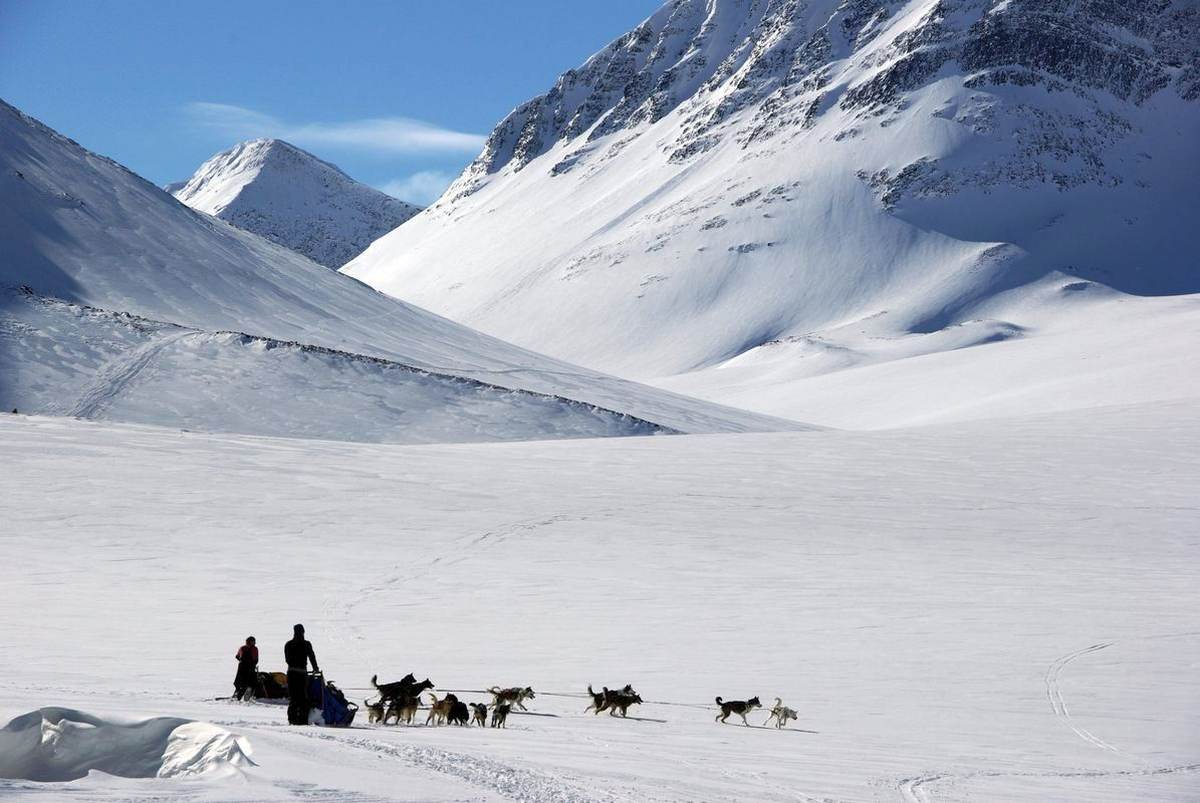(FOTO: Liane Gruda) Große Gespanne für schwere Touren auf dem Weg vom Tal Vistasvaggi hinauf ins Tal Stuor Räitavagge, Schwedisch Lappland, Sápmi