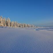 (FOTO: Liane Gruda) Winter in Sápmi: Atemberaubend schön, aber auch tierisch kalt. Temperaturen bis zu -40 Grad sind im Winter keine Seltenheit.!