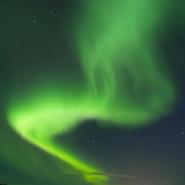 (FOTO: Liane Gruda) Mit etwas Glück können Teilnehmer der Rentiersafari auf ihrer Tour auch das sagenumwobene Nordlicht sehen.