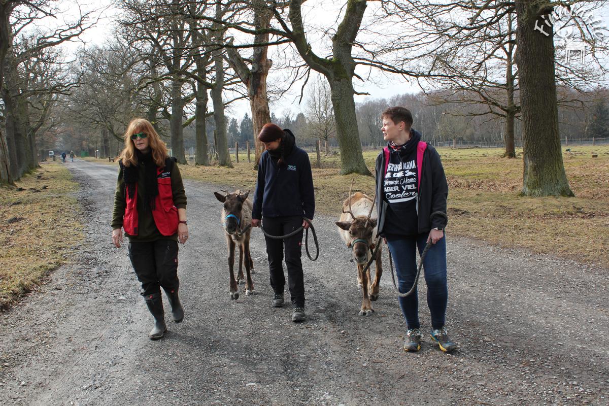 (FOTO: Finntastic) Unterwegs mit Rentieren: v.l.n.r. Brigitte von RENRAJDvualka, Lawrence vom Augsburger Zoo und Rentierfan Astrid.