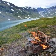 (FOTO: Liane Gruda) Oberhalb der Baumgrenze sind Zwergbirke, Wachholder und Weide die einzigen Brennmaterialien für ein Kochfeuer.