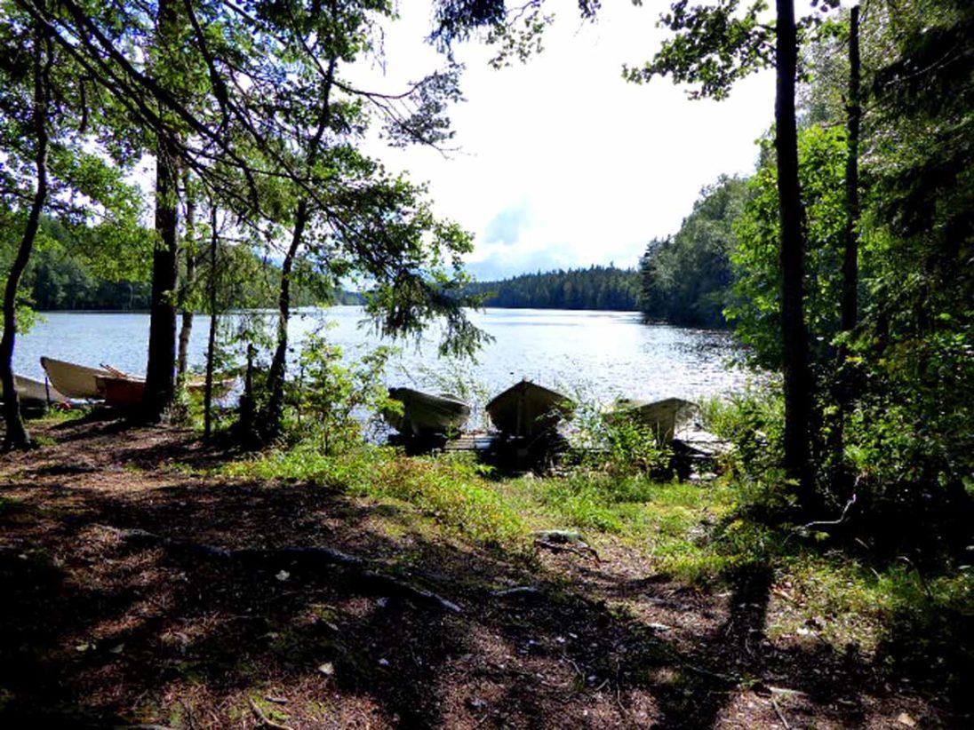 See und Wald Finnland