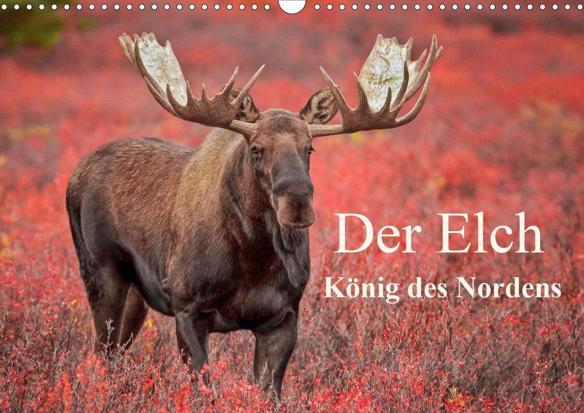 Elchkalender