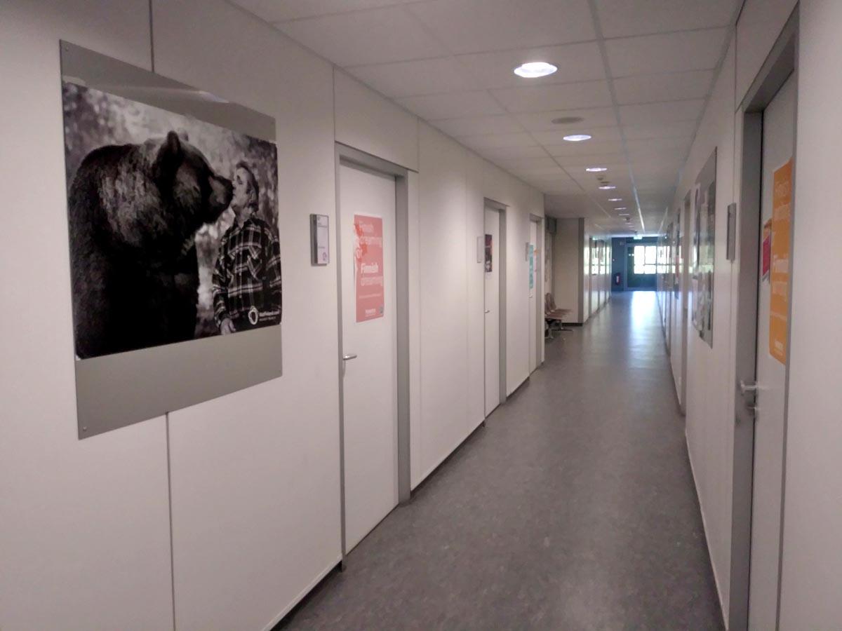 Flur der Fennistik der Universität Köln