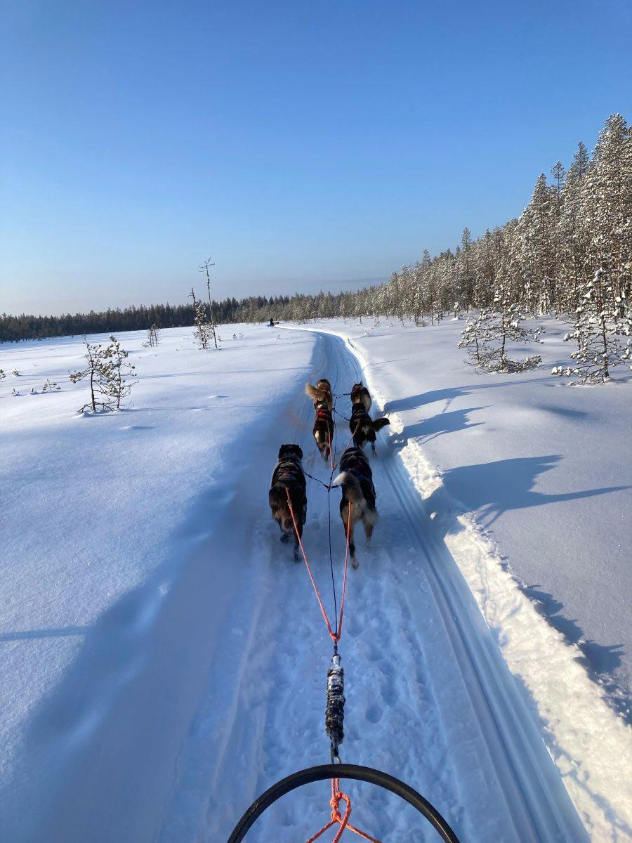 On Tour im Schnee