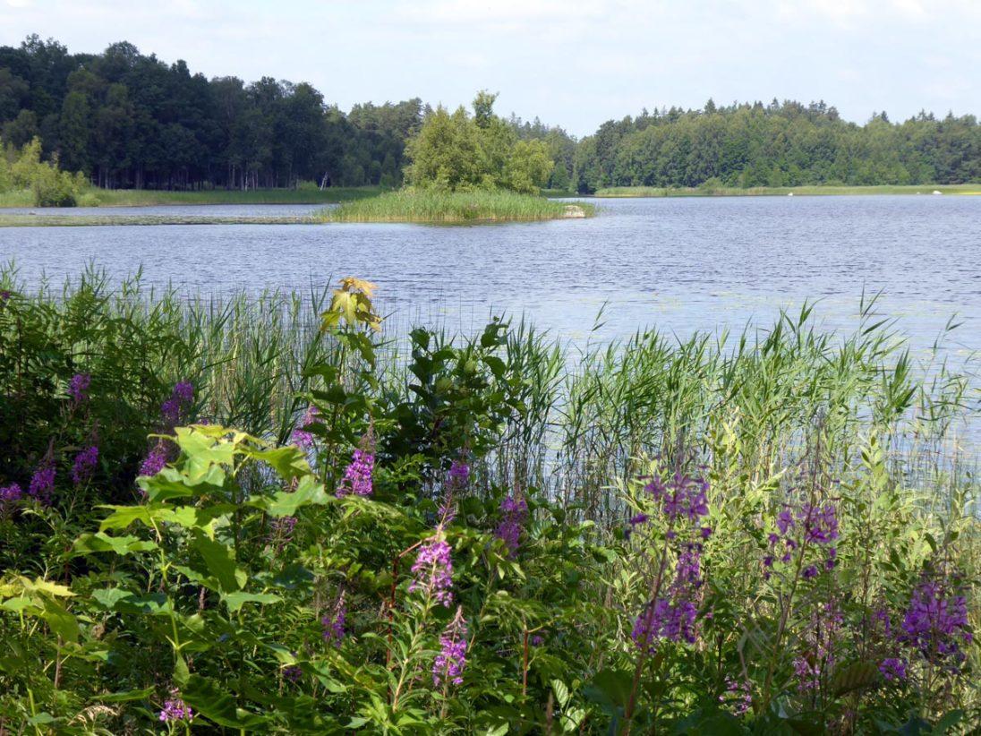 Smaland - Schweden im Sommer