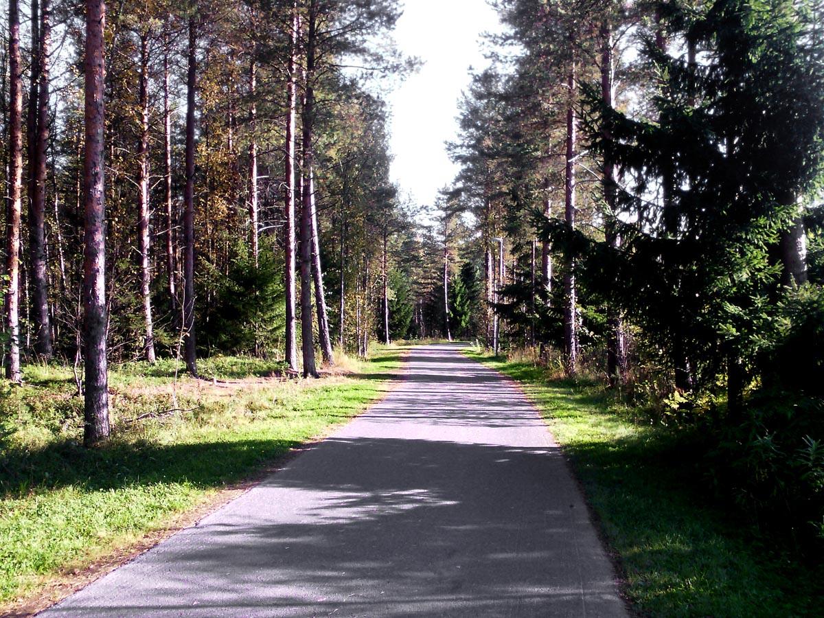 Der Weg zur Uni in Oulu