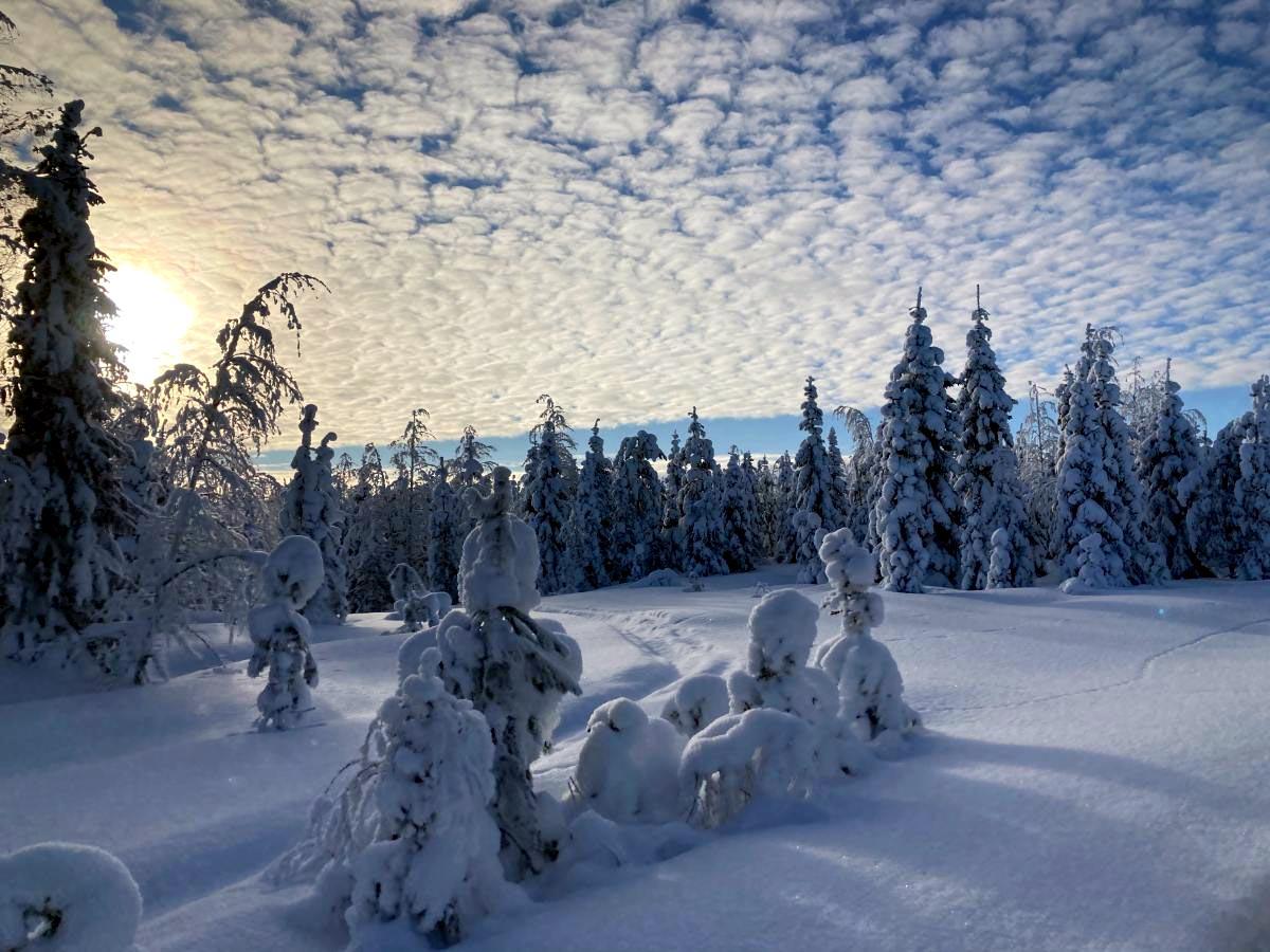 Winderwonderland Finnland